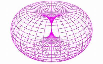 Torus Horn Dynamic Geometric Exist Does Pages