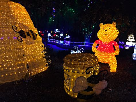 hunter valley gardens christmas lights playing in puddles