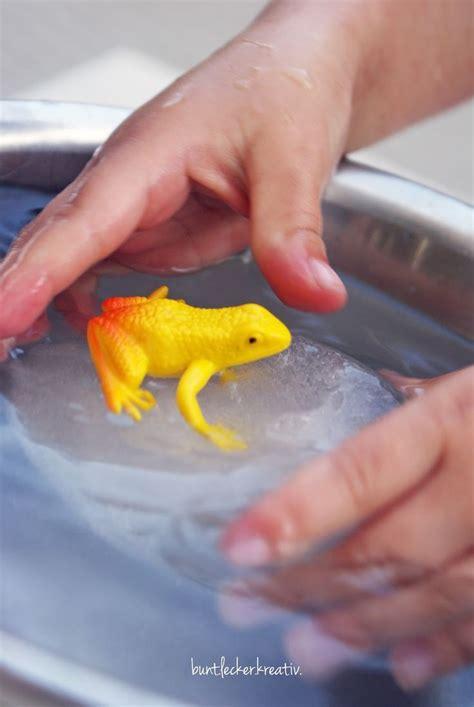 Die besten 17 Ideen zu Experimente Mit Wasser auf