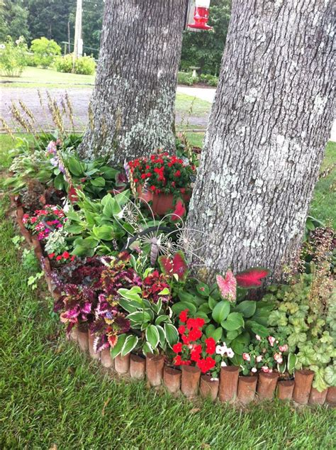 shade flower bed consists  hostas caladiums
