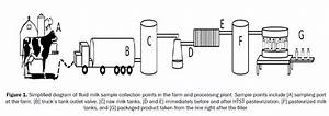 Identification Of Spoilage Bacteria Present In Laboratory