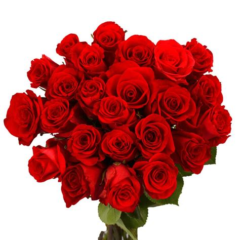 Valentine's Red Rose Flowers