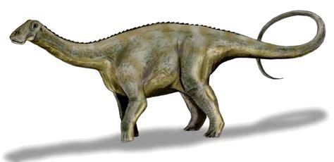 File:Nigersaurus BW.jpg - Wikimedia Commons