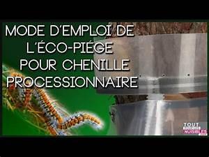 Piège à Chenilles Processionnaires : eco piege chenilles processionnaires youtube ~ Dailycaller-alerts.com Idées de Décoration