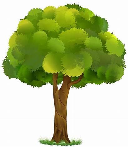 Tree Transparent Clip Clipart Trees