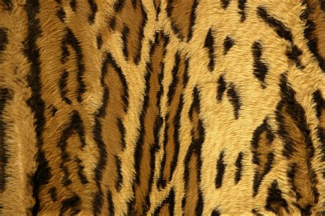 Animal Skin Wallpaper - animal skin patterns www pixshark images