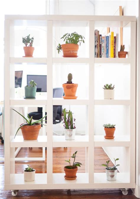 natural plant wall ideas  room dividers
