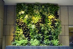 Plants, On, Walls, Vertical, Garden, Systems, December, 2012