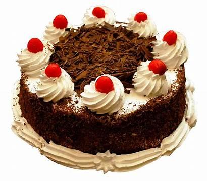 Chocolate Cake Transparent Purepng