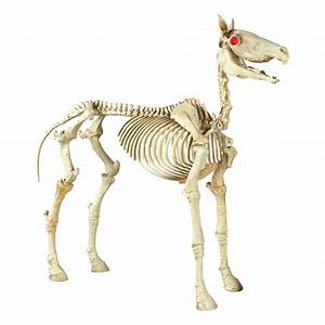 Home Accents Holiday 74 in Halloween Standing Skeleton