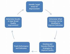 Section 16  Quality Assurance And Performance Improvement