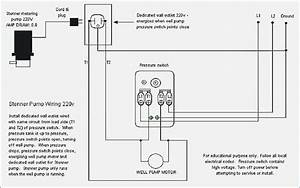 Pump Pressure Switch Wiring Diagram  U2013 Bestharleylinks Info