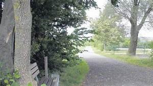 Gartenmauer Kosten Pro Meter : wirtschaftsweg kosten vier euro pro meter nachrichten ~ A.2002-acura-tl-radio.info Haus und Dekorationen