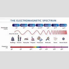 Spectrum  Write Science