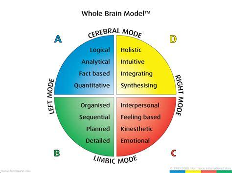 hbdi  brain model facilitating success