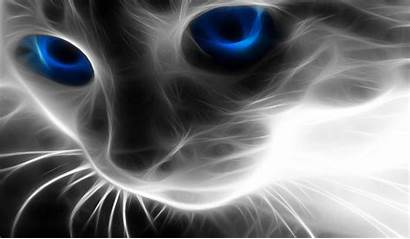 Cool Effect Wallpapers Desktop Fantasia Background Animal