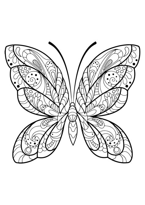 disegni da colorare per adulti farfalle insetti 61714 farfalle e insetti disegni da colorare