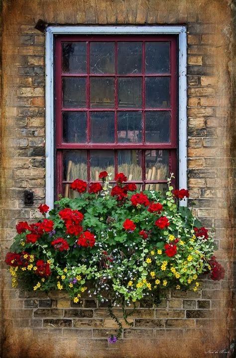 fioriere per davanzale finestra pin by atosa on porte fiori da balcone vasi da fiori