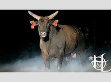 Professional Bull Riders Mossy Oak Mudslinger to be