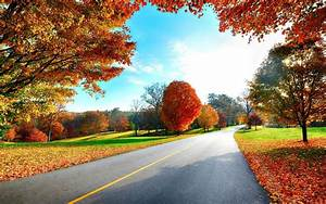 1920x1200 Lovely Autumn Scenic & Road desktop PC and Mac ...
