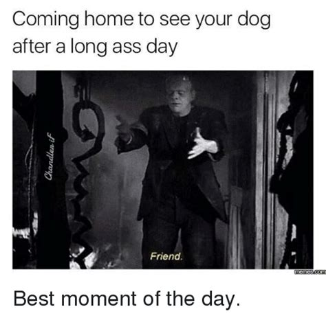 Long Ass Day Meme - 25 best memes about long ass day long ass day memes