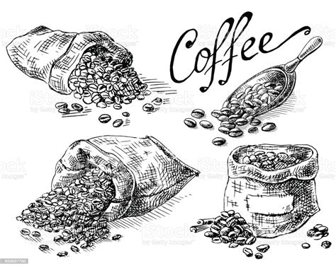 Download and use 10,000+ coffee illustration stock photos for free. Set Of Coffee Beans In Bag Stock Illustration - Download Image Now - iStock