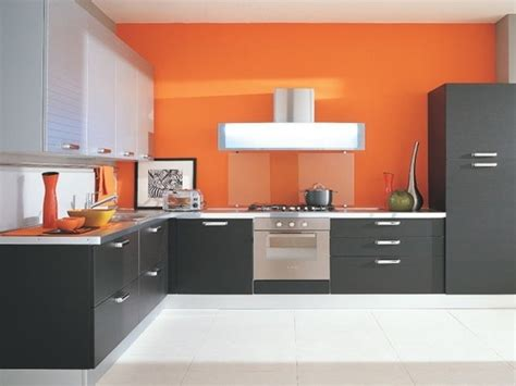 colour combinations  modular kitchen