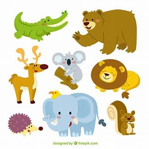 Animals Vectors, Photos and PSD files | Free Download