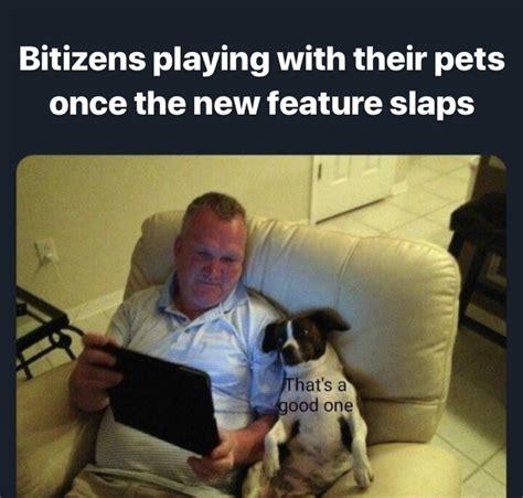 comments bitlifeapp