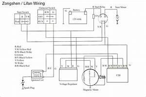 Schema Electrique Quad Smc 250
