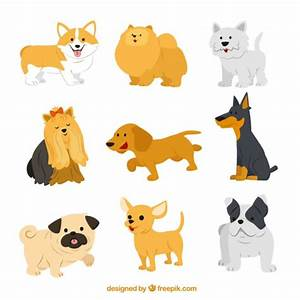 Cute dog breeds Vector   Free Download