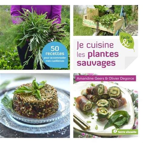 cuisine plantes sauvages cueillettes sauvages sans risques baies plantes