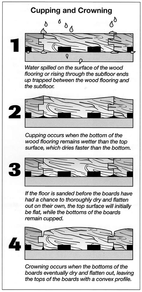 hardwood floor cupping and crowning how moisture affects hardwood floors 183 stan s flooring