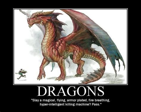 Dragon Memes - dragons d d memes pinterest new ideas red dragon and i am