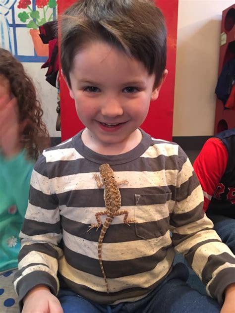 scholars preschool 996 | little scholars preschool animal exp 2