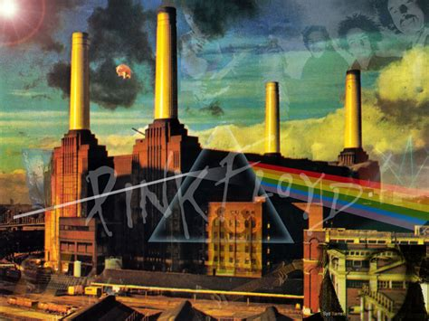 Pink Floyd Animals Wallpaper - pink floyd animals wallpaper wallpapersafari