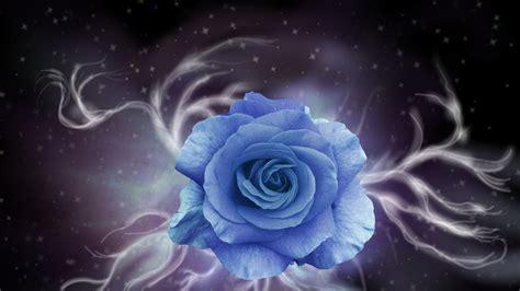 rosa abstracta azul   fondos de pantalla
