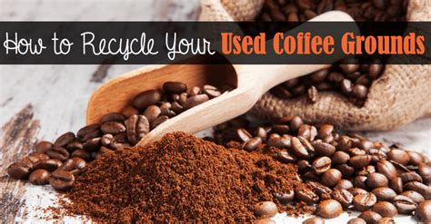 Iced coffee vs cold coffee grounds work in a similar way. Great Ways to Recycle Your Used Coffee Grounds