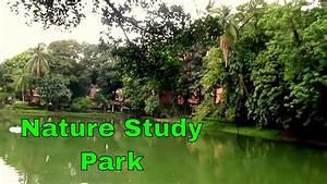 Nature Study Park, Kolkata - YouTube