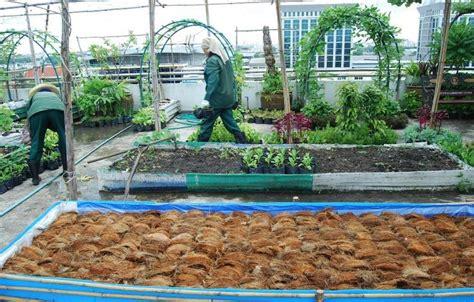 คัดมาให้ดู!! 100 ไอเดียแปลงปลูกผักสวนครัว สวยๆ แบบประหยัดพื้นที่ แบบเกษตรพอเพียง | ปลูกผักหลัง ...