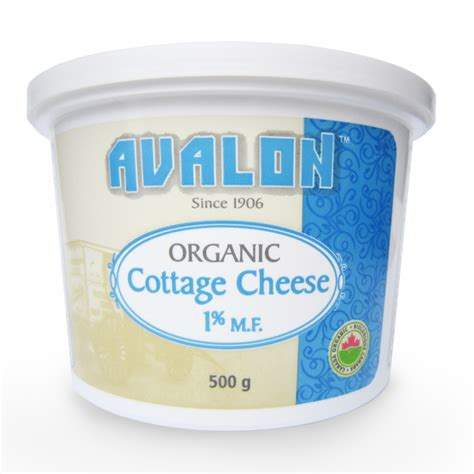 Non Dairy Cottage Cheese 28 Images Home Improvement
