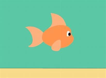 Fish Gifs Animation Animated Poisson Swimming Pescado
