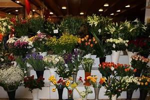 fleurs coupees isabelle fleurs With affiche chambre bébé avec bouquet de fleurs coupées