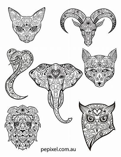 Sugar Pages Coloring Dead Animal Skulls Halloween