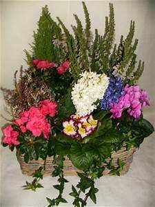 Plantes Pas Cher Paris : arrangement de plantes fleuries pour cimetiere deuil ~ Dailycaller-alerts.com Idées de Décoration