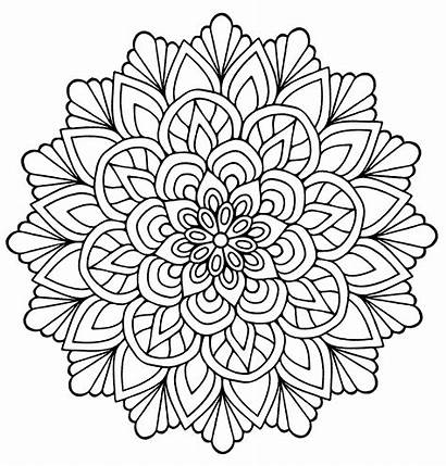 Mandala Flower Flowers Coloring Mandalas Adults Lines