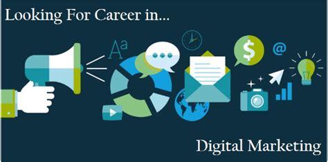 looking for seo looking for career in digital marketing expert