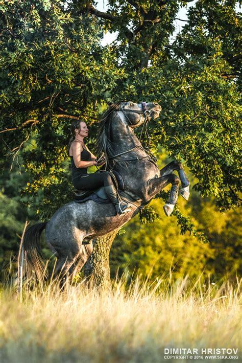 rearing woman stallion young horse riding print rear wild 54ka farm male teen strong animal mane horseback amazing sky message