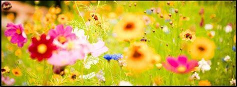 En Güzel İlkbahar Kapak Resimleri