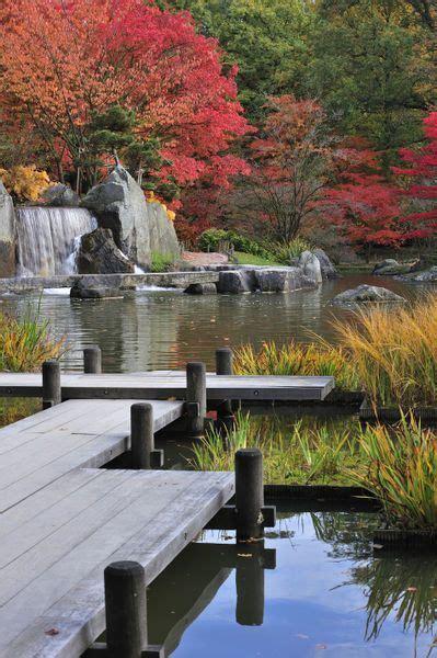 Japanischer Chinesischer Garten Pflanzen by Japanischer Garten Teich Gartenteich B 228 Ume Pflanzen